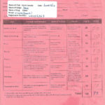 Canadian Kennel Club, Field Dog Junior Test Scoresheet