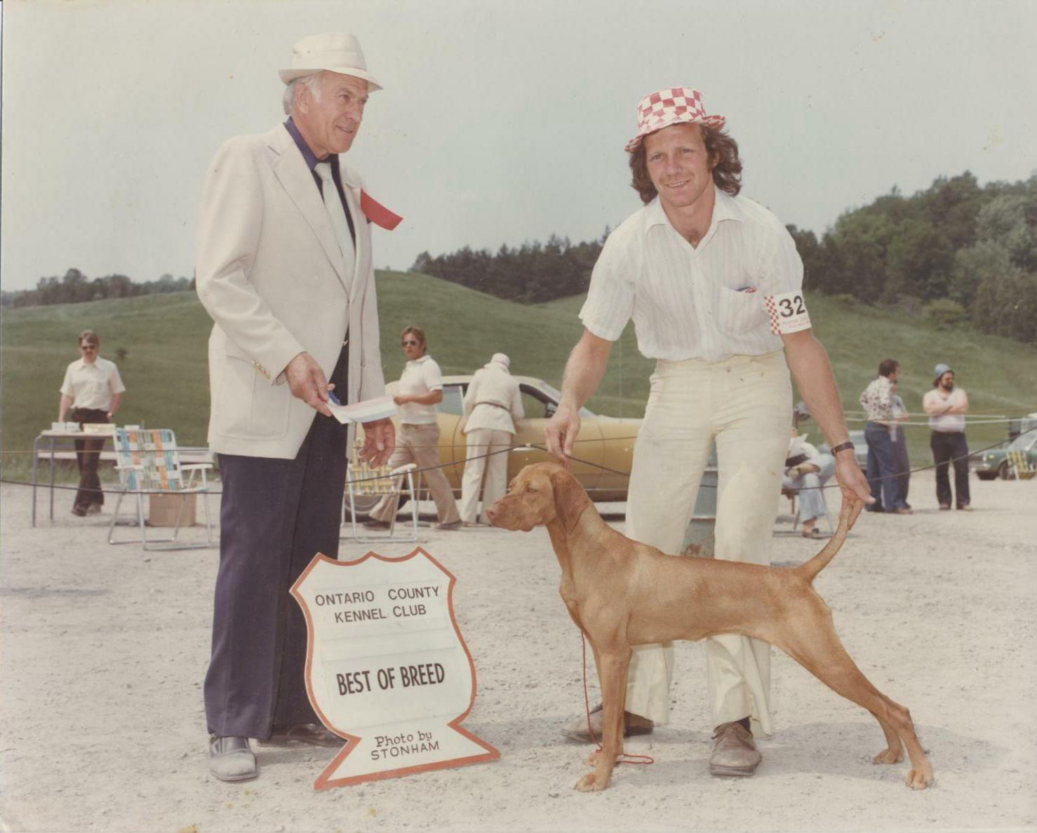 Vizsla Best of Breed 1977