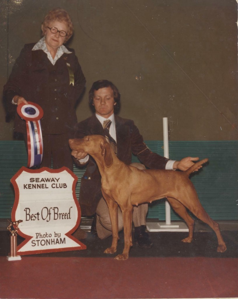 Vizsla Best of Breed 1978