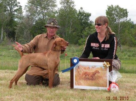 Vizsla Cleo winning Most Versitile