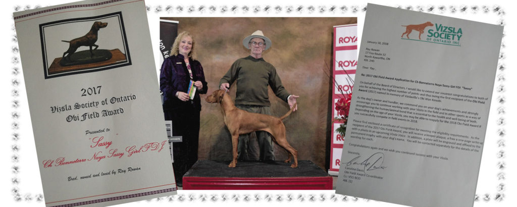 Sassy Girl receives the Vizsla Society of Ontario Obi Field Award