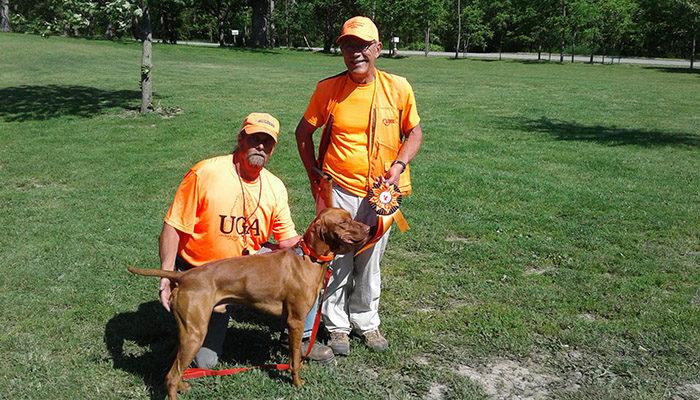 Vizsla Field Dog Junior Testing