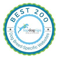 Best Vizsla Breed Website